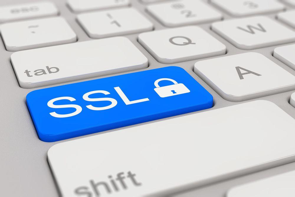 Você sabia, preservar dados do site é uma prática necessária para a saúde do seu negócio? Mesmo as pequenas empresas necessitam ter uma segurança online.